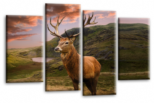 Highland Stag Deer Scottish Canvas Wall Art Picture Print